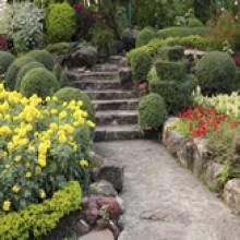 Harewood House & Gardens